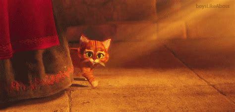 imagenes gif gracias con movimiento gracias con gato gif con movimiento imagui