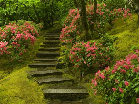 Japanese Garden In by Hd Wallpapers High Definition 100 Quality Hd Desktop