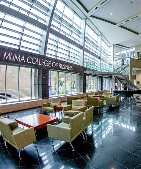 Mba Usf Cost by Of South Florida Muma College Of Business