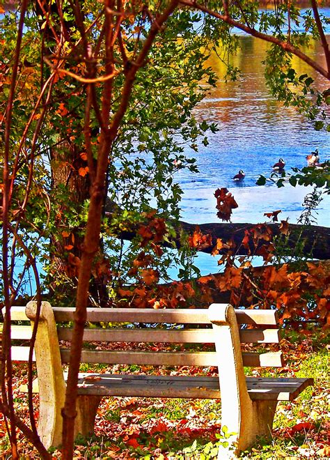 park bench nj park bench fowl in frenchtown nj love s photo album