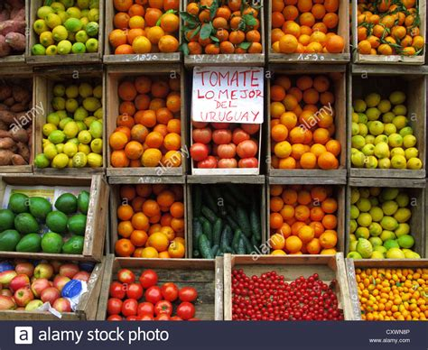 produce vegetables and fruit display a greengrocers fruits and vegetables display montevideo