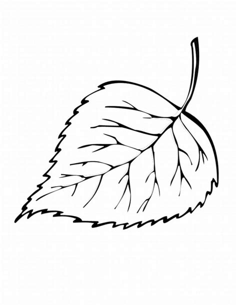 Coloring Page Leaf free printable leaf coloring pages for