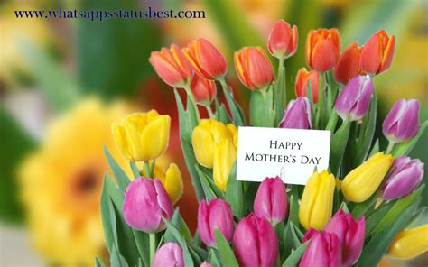 photos for day happy mothers day images happy mothers day hd wallpapers