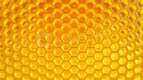 honeycomb honey healthy natural organic nutritious food