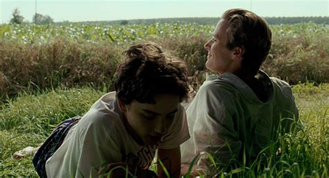 call me by your name the oscars the and everything in between awards
