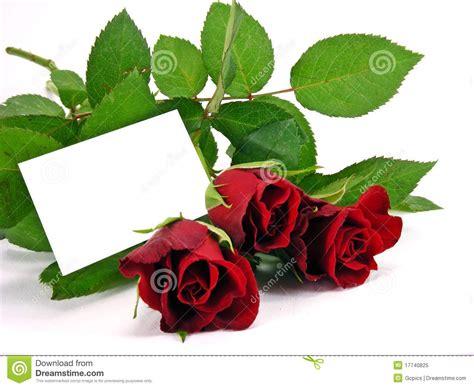 imagenes de feliz jueves con rosas rojas pictures images rosas rojas con la tarjeta del regalo imagen de archivo