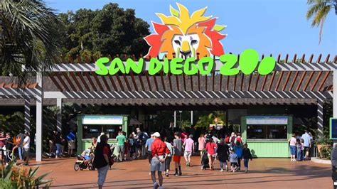 san diego zoo lights nighttime zoo celebration surprises with end of summer