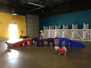 A Yard Of Gravel Dog Daycare Dog Boarding By Carolinas Critter Sitters