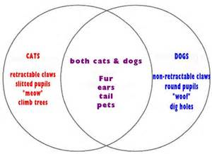 Compare And Contrast Essay On Cats And Dogs by Venn Diagram Math 101