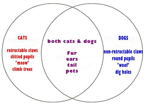 venn diagram reading edgrafik venn diagram math 101