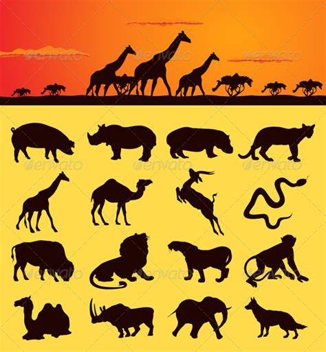 african animals2 graphicriver
