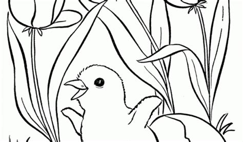 get this free preschool spring coloring pages to print p1ivq spring colouring pages for preschoolers season coloring