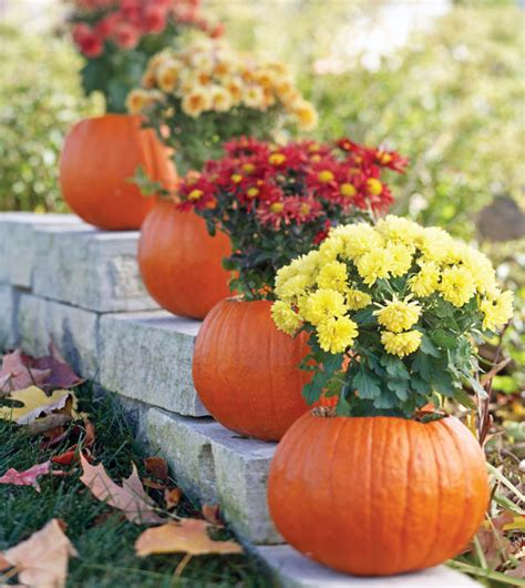 fall flowers for garden fall container gardens