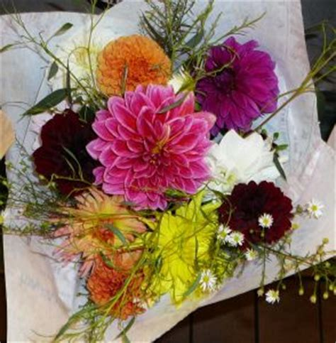 cheap new year flowers cheap seattle flowers photo free