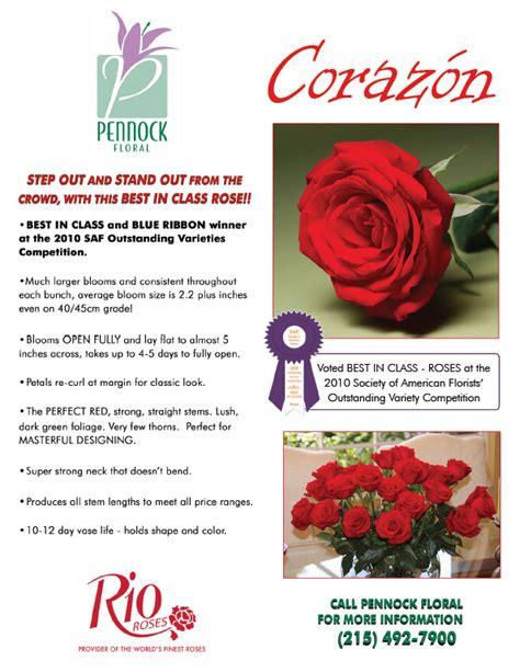 rose pennock floral page 2 rose corazon pennock floral