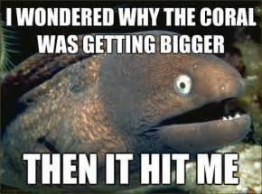 Eel Meme - eel