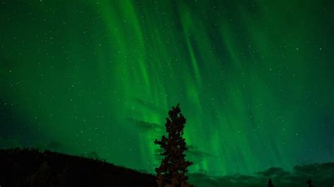 where to see northern lights in new york new york city movers share easiest way to get to the