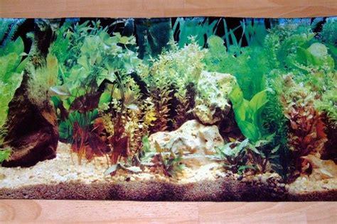 ghiaia acquario dolce sfondi per acquari accessori per acquario
