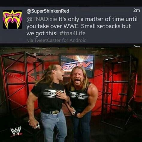 Wwe Wrestling Memes - 575 best images about wwe funny on pinterest wwe funny