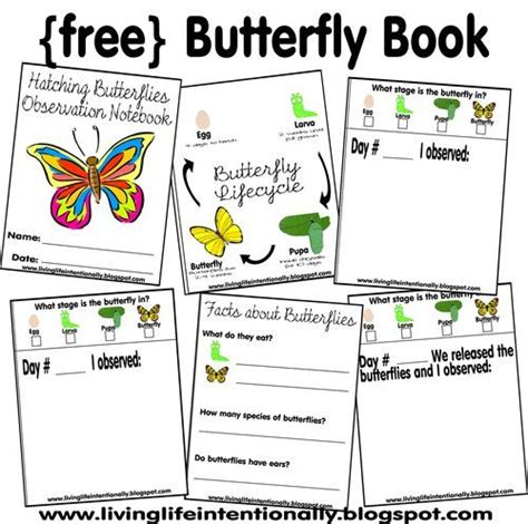 printable caterpillar observation journal 172 best images about butterfly life cycle on pinterest