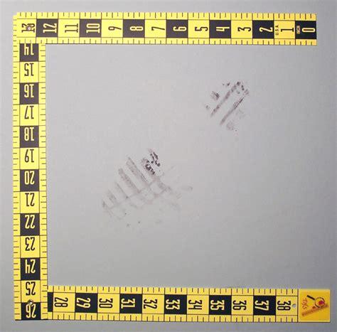 printable evidence ruler folding evidence scale