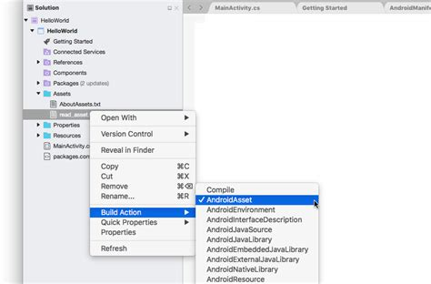 Android Read File From Assets by Using Android Assets Xamarin