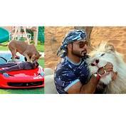 23 Fotos De Millonarios Exc&233ntricos En Dubai  Maschevere