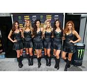 Related Pictures Grid Girls Monster Energy French