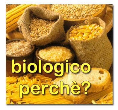 bio alimenti quali sono le caratteristiche degli alimenti biologici