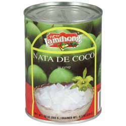 Tepung Powder Nata De Coco nata de coco in syrup lamthong