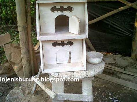 cara membuat rumah burung merpati dari kardus cara membuat kandang burung merpati cantik