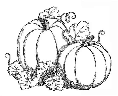 coloring pages of fall pumpkins 21 fall coloring pages free word pdf jpeg png format