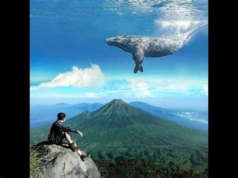 edit foto cara edit foto menambahkan ikan paus di langit melalui picsart android