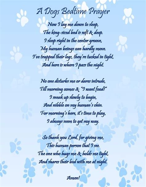 dogs prayer a dogs bedtime prayer a dogs
