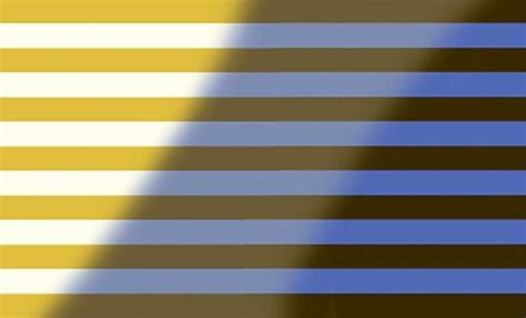 it s white and gold no it s blue and black thoughts from is that dress white and gold or blue and black the new