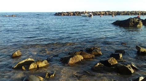 hotel gabbiano santa marinella hotel il gabbiano santa marinella itali 235 foto s