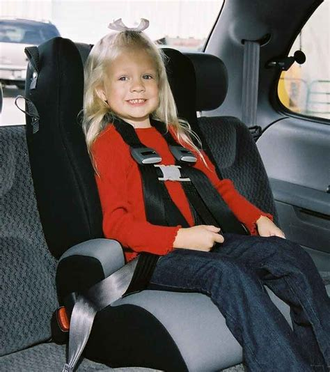 special needs seat belt harness car seat belt harness for adults get free image about