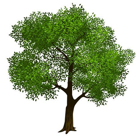 tree clipart green tree clip clipart