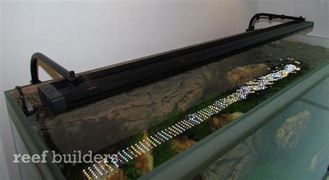 fluval sea 25000k marine and reef light fluval led striplights combine a ton of leds in several