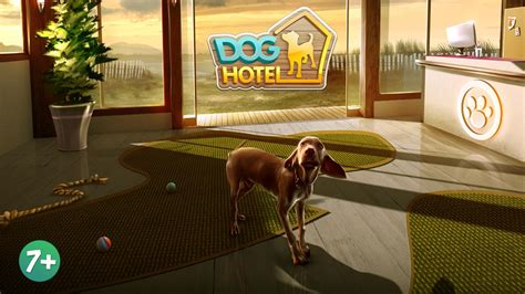 doghotel lite  dog boarding android apps  google play