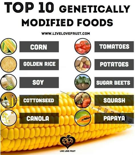 Gm Detox Diet Disadvantages by Genetically Modified Foods To Avoid Integrative Cancer