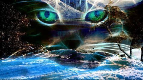 imagenes abstractas reales imagenes hilandy fondo de pantalla abstracto mirada de gato