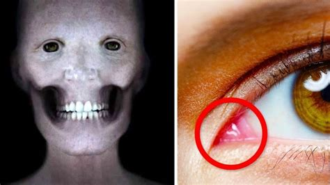 try jaw 17 jaw dropping facts you didn t know about the human body