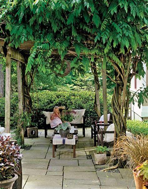 outdoor garden rooms garden porch climbing vines climbing and
