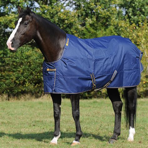 turnout rugs cheap clearance turnout rugs rugs ideas