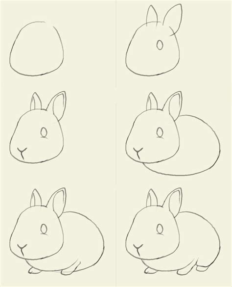 let s draw bunnies 35 step by step bunny drawings books t matthews march 2013