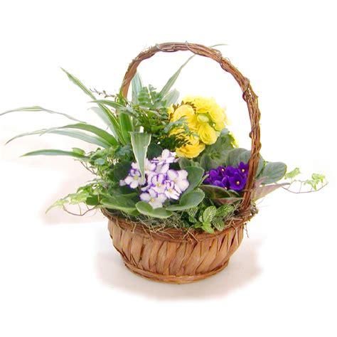 medium flower basket 9