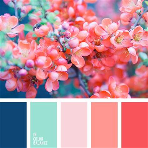 pink color schemes 25 best ideas about bright color palettes on
