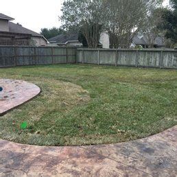 Army Of One Landscaping Lawncare 40 Photos Tree Landscaping Corpus Christi