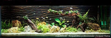 vasche aperte per acquari realizzazione di acquari su misura roma aquarium